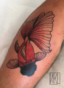 Goldfish Poisson rouge Tattoo - La Rochelle - Rochefort Niko Bushman