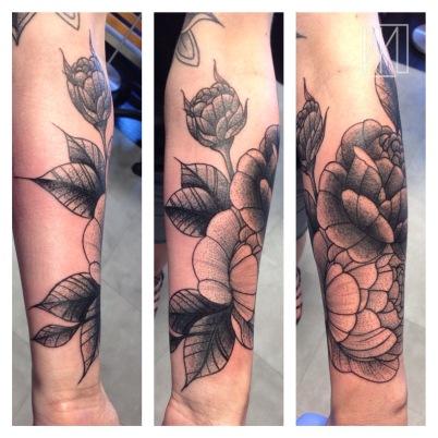 Roses sur Lydie - la Rochelle - Niko Bushman